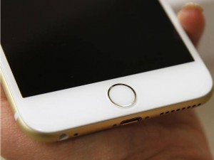 iphone6touchid
